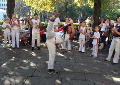Oppvisning på Karl Johan september 2014